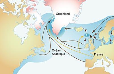 Cycle de déplacement du saumon